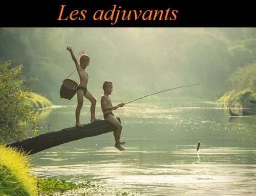 Les adjuvants !